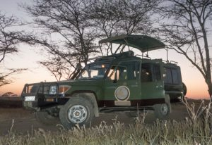 safari-vehicle-30