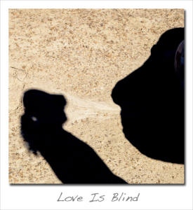 180212 Love Is Blind