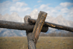 Pete McGing-Fence Post with Tetons_DSC7929
