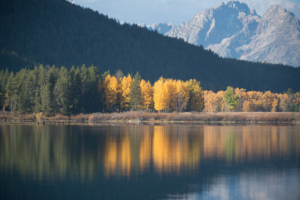 Pete McGing-Reflections at Oxbow Bend_DSC7043