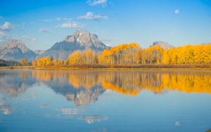 15 T Paul R-OXBOW BEND AUTUMN