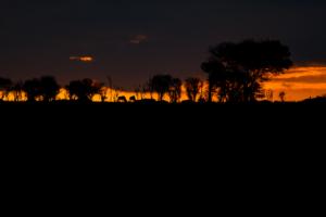 AP-Semetu Dawn