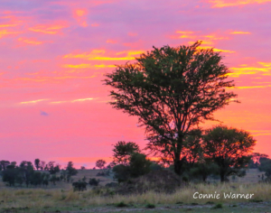 CW-Tanzania Sunset  (1 of 1)