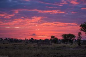 MWC-Sunset in Serengeti