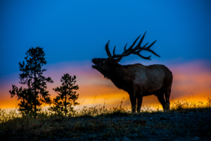 Andy Phan-Elk with the sunset 6