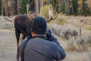 Glen Walls-Andy Gets His Moose (1 of 1)