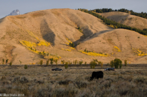 Glen Walls-Sunrise at Gros Ventre CG (1 of 1)