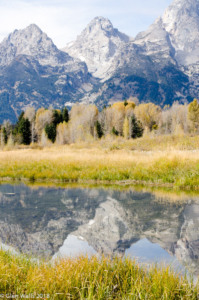 Glen Walls-Teton Reflections (1 of 1)