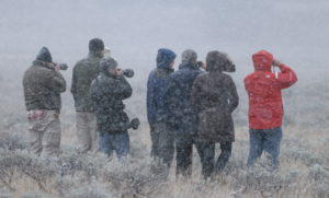A tough group indeed at my Teton Workshop watching a grizzly and
